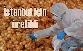 İstanbullu'nun soğan ve patatesi Adana'dan geldi