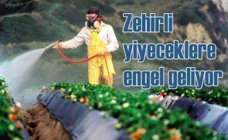 Pestisitlere dayalı tarım sistemi değişecek
