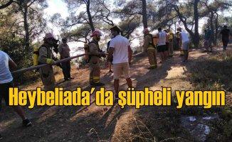 Heybeliada orman yangınında sabotaj şüphesi, 3 gözaltı var