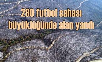 Kozan'da 280 futbol sahası büyüklüğünde orman kül oldu