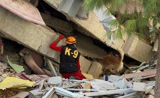 İzmir Depremi | AKUT, enkaz altından 11 can kurtardı