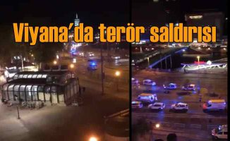 Viyana'da terör saldırısı | Yaralılara Türk boksör yardım etti | 7 ölü var
