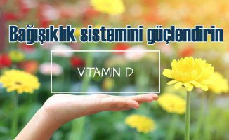 Bağışıklık Sistemimizi Koruyan Asker |D Vitamini