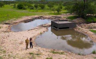 Belgesel | Bir damla yağmur ile değişen doğal yaşam | Su Birikintisi