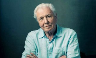 Sir David Attenborough kimdir?