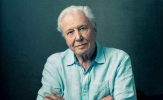 Sir David Attenborough kimdir?