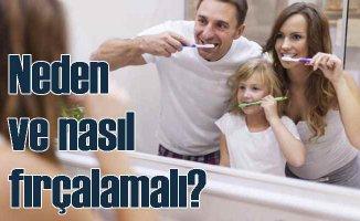 Dişlerimizi fırçalamak neden önemli?