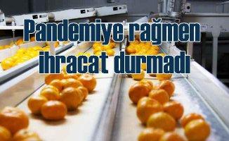 EİB pandemiye rağmen 4.5 milyar dolarlık sebse meyve ihrac etti