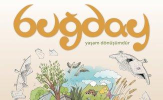 Buğday E-Dergi'nin yeni sayısı |Yeni Normal'e ekolojik bir bakış