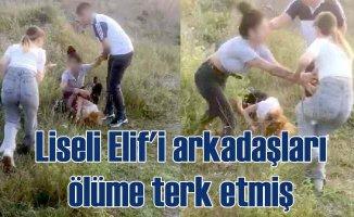 Elif Çakal Cinayeti | Genç kızı taş ocağında linç etmişler