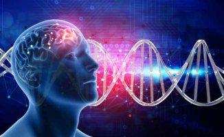 Genlerde Mutasyonla Ortaya Çıkan Bir Hastalık | Rett Sendromu