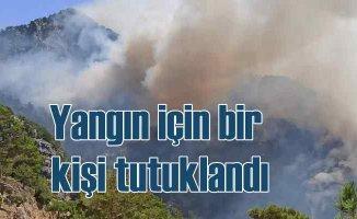 Akseki'de orman yangını | Bir kişi tutuklandı