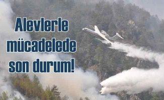 Orman yangınları | Havadan karadan müdahale sürüyor