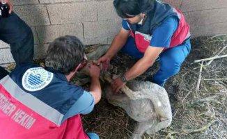 Sarıyer Belediyesi ekipleri destek için Manavgat'ta