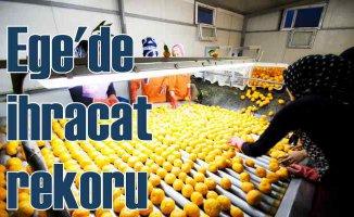 Yaş meyve sebze ihracatı son 12 ayda 3 milyar doları aştı