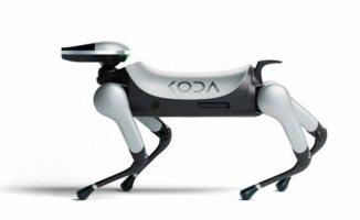 Çağ ötesi ödüllü robot tasarımları