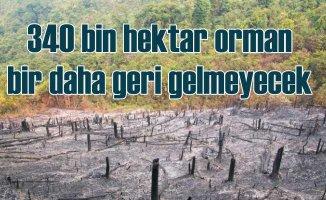 Orman yangını mı, ormansızlaşma mı?