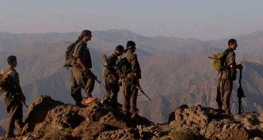PKK, odun toplayan 7 kişiyi kaçırdı