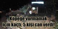 Adanada köpek yüzünden kaza, 5 ölü 3 yaralı var
