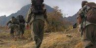 BDP ilçe başkanı PKK'YA 3 çocuk götürüp teslim etmiş