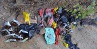 Bingölde eylem hazırlığı yapan 9 PKKlı yakalandı