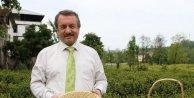 Çaykur Genel Müdürü Sütlüoğlu uyardı: Kaçak çayda tehlike çok büyük
