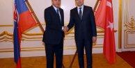 Cumhurbaşkanı Erdoğan Slovakya Millî Konsey Başkanı Peter Pellegrini ile görüştü