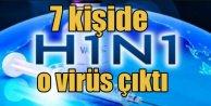 Düzce'de domuz gribi alarmı; 7 kişi tedavi altında