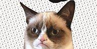 Grumpy Cat (Huysuz Kedi) Türk Okuruyla Buluşuyor