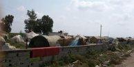 Hayatları pahasına çadırlara 'Kancalı kaçak hat' çekiyorlar