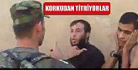 IŞİD militanı Peşmergeye böyle yalvardı