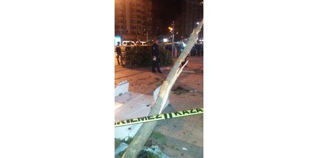 Kamyonet ağaca çarptı: 1 ölü, 1 yaralı