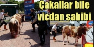 Kayseri'de kasap dehşeti, görenlerin kanı dondu