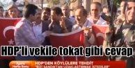 Köy korucularından HDP'li vekile tokat gibi cevap