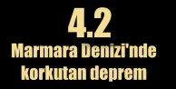 Marmara Denizi'nde deprem: Marmara 4.2 ile sallandı