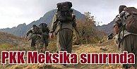 Meksika-ABD sınırında 4 PKK'lı yakalandı