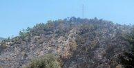 Mersin'de 100 hektar ormanlık alan yandı