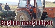 MHP'li başkan, personel maaşını buğday ekerek çıkaracak