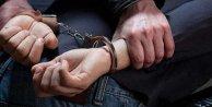 Şişli'de domuz bağı cinayetine 11 gözaltı