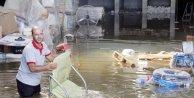 Yanlış arazi sulaması, ev ve işyerini su altında bıraktı