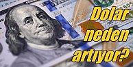 Dolar neden yükseliyor? Dolar kuruyla kim oynuyor?