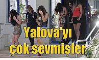 Yalova'da fuhuş operasoynu; 73 gözaltı var