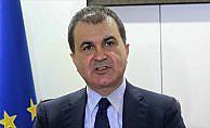 AB Bakanı Çelik'ten Avrupa'ya aşırı sağla mücadele çağrısı