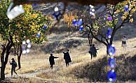 Sarının tonları Kapadokya'yı sardı