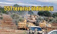 Son Dakika Afrin; 557 terörist öldürüldü