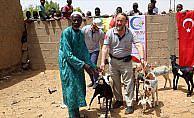 Cansuyu'ndan Afrikalılara 'canlı hayvan' desteği