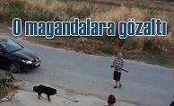 Pompalı tüfekle köpeklere saldıran magandalar için gözaltı