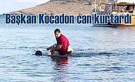 Bodrum Belediye Başkanı Kocadon, hayat kurtardı
