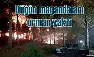 Düğünde atılan havai fişekler orman yaktı