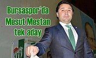 Bursaspor'da Mesut Mestan tek aday